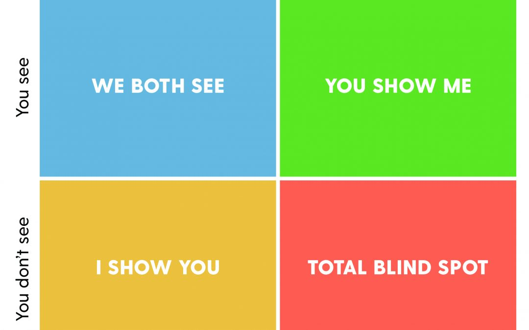 How to Remove Blind Spots to be a Better Leader