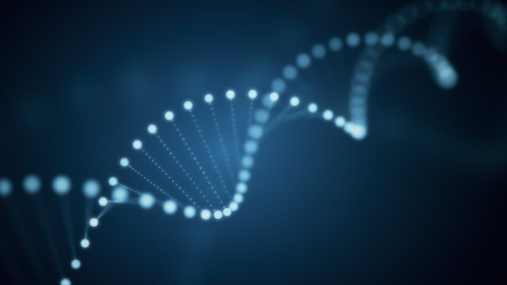 A 3D illustration of a rotating DNA glowing molecule on blue background, representing the genetic markers of a leader